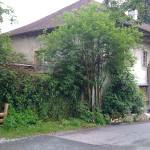 Le Manoir Chindrieux - Savoie